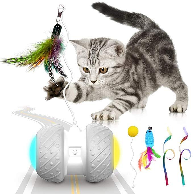 cat toys Australia